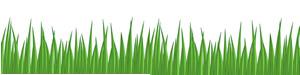 grass_sm