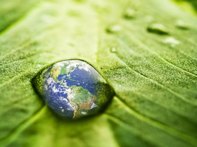 The Infinite Possibilities of Online Sustainability Reporting