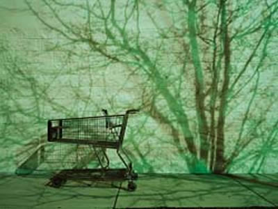 Green Marketing: Motivating Mainstream Consumers to Make Sustainable Choices