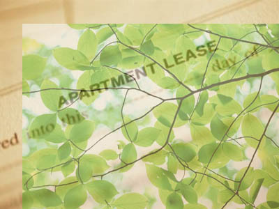 green-lease-agreement