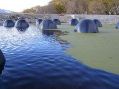 Bio-domes Offer a Sustainable Waste Water Solution