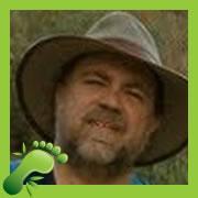 Steve Carl Green IT Expert